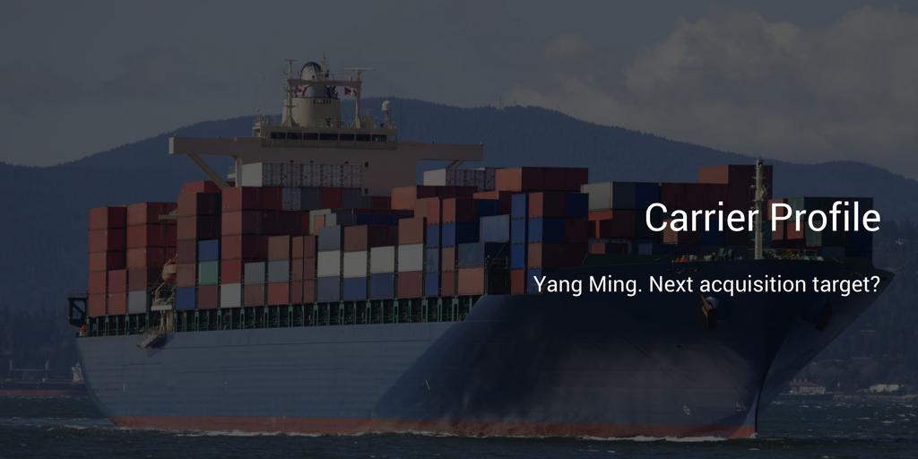 Yang Ming profile.png