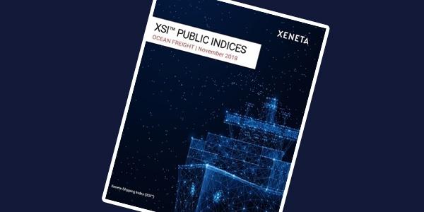 XSI Public Indices Report Nov 2018-1