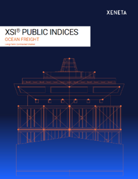 XSI Public Indices new cover