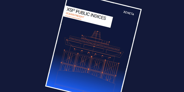 XSI Public Indices Report email banner