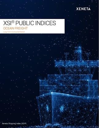 XSI Report Cover
