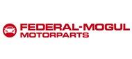 Federal-Mogul Motorparts