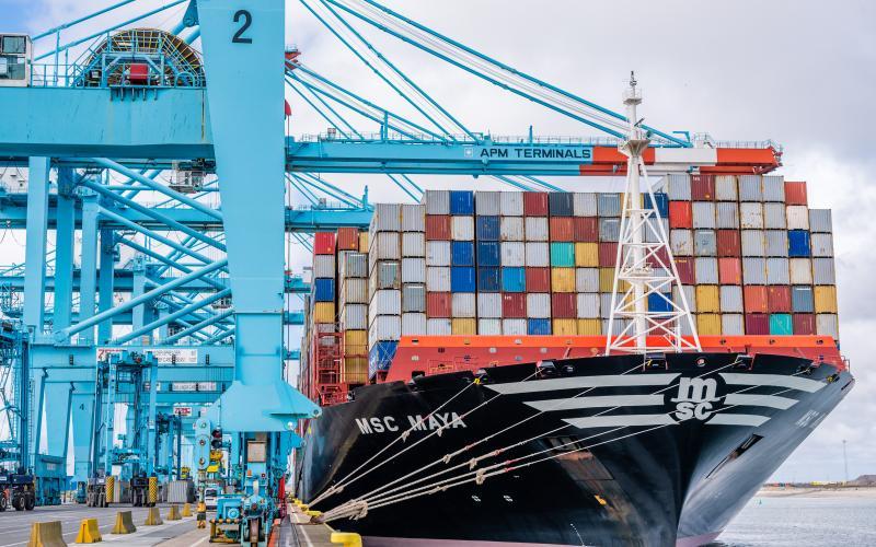 APM-Terminals-Zeebrugge-MSC-Maya
